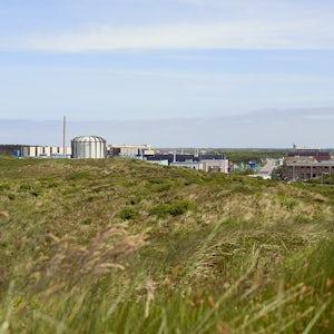 Government Announces Progress On Pallas Reactor