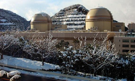 Regulator Appeals Over Decision To Keep Ohi Reactors Offline