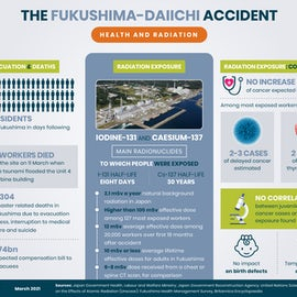 Fukushima 10 Years On / Health And Radiation Effects Of Nuclear Plant Accident