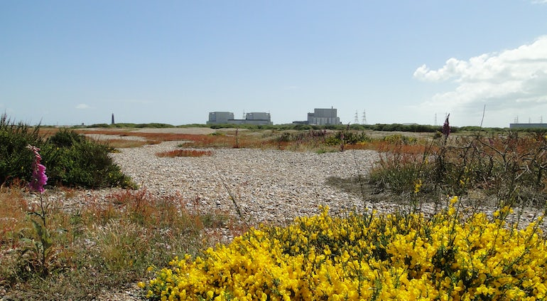 Report Urges UK To Deploy Green Nuclear Hydrogen Technology 'At Pace'