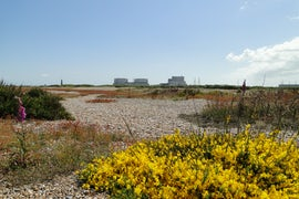 Decommissioning Of Dungeness B Units To Begin Seven Years Ahead Of Schedule, Says EDF Energy